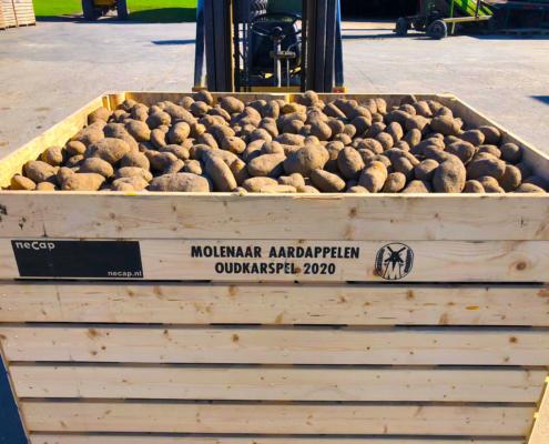 Molenaar aardappelen