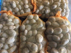 net zakken aardappels van verschillende kg